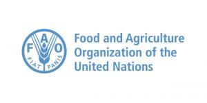 FAO_Mesa de trabajo 1
